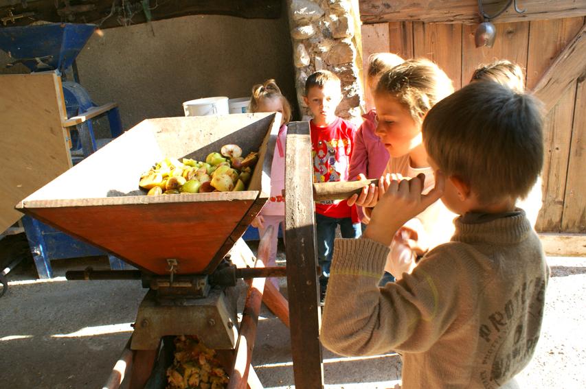 Ferme d'Antan accueil enfants